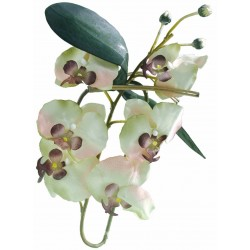 Orchidée blanche 80 cm