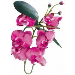 Orchidée bordeaux 80 cm
