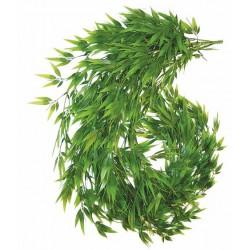 Bambusranke DRAGON - 120cm - 150cm