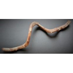 Petite Liane 55cm